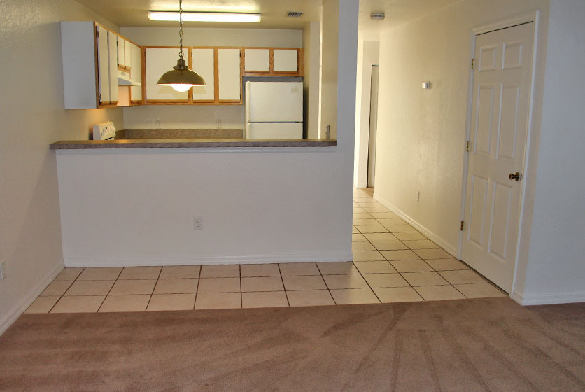 Plaza Royale Apartments Gainesville Swamp Rentals