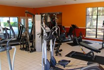 Gym with Elliptical, Controlled Weight Machines, Punching Bag, and more!