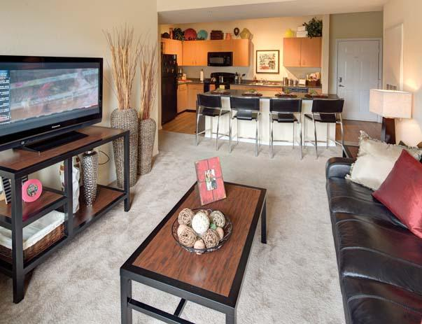 Fully Furnished Common Areas Include Leather Style Sofa